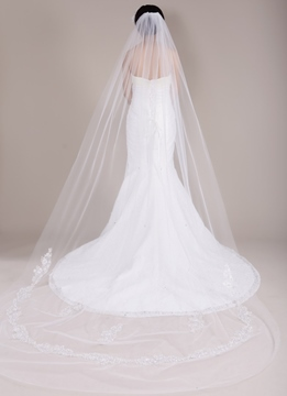 Cathedral Train Long Wedding Veil