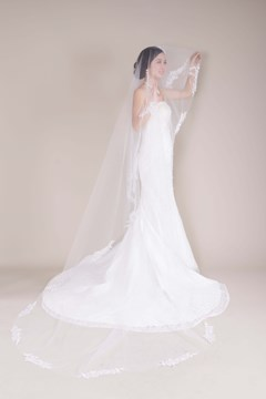 Cathedral Tull Applique Wedding Bridal Veil with Crystal