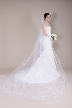 Chapel Length Wedding Veil with Appliques