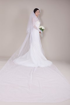 Cathedral Tull Wedding Bridal Veil with Embroidery
