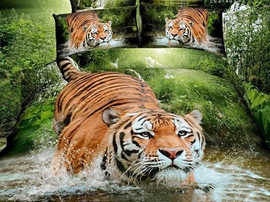 Fierce Tiger Play in The Water Cotton Bedding Sets