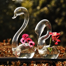 Nice The swan model Glass Vases