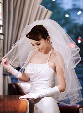 Pretty Beading Wedding Veil