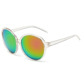 Circular Dazzle Colour Shades Sunglasses