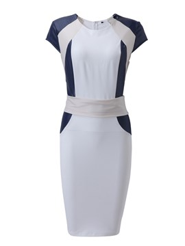 Ericdress Color Block Patchwork Sleeveless Sheath Dress