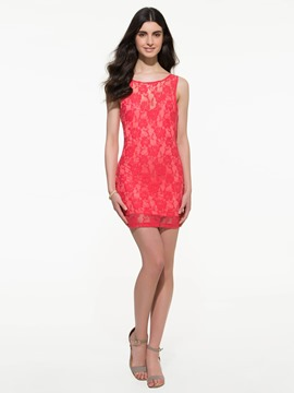 Popular Pop Star Temperament Sleeveless Lace Sheath Dress