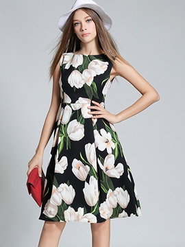 Ericdress Summer Print Sleeveless A-Line Casual Dress