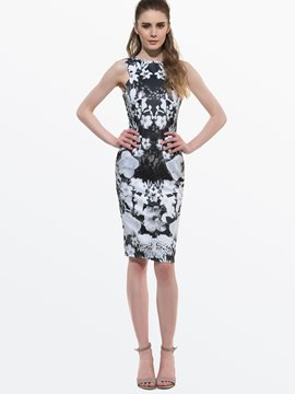 Ericdress Print Sleeveless Sheath Dress