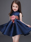 Ericdress Floral Embroidery Appliques Pleated Girls Dress