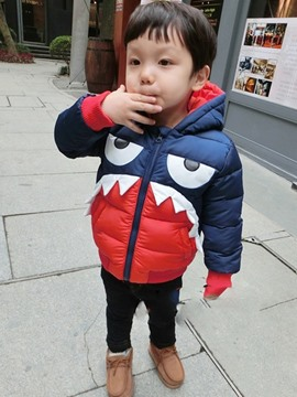 Ericdress Shark Like Hooded Boys Jacket